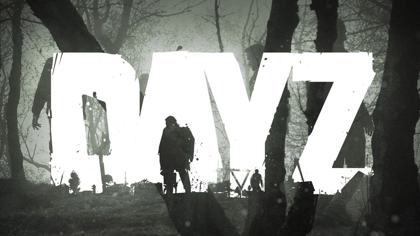 dayz-vendas-interna